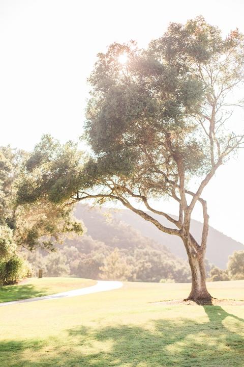 vista-valley-country-club-wedding-126